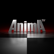 AnimA - Web Logo - metallic